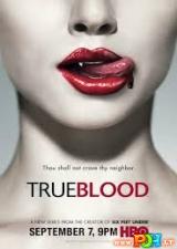 Tikras kraujas (1 Sezonas)
