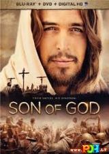 Dievo sūnus