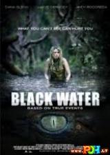 Juodas vanduo