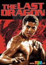 Paskutinis drakonas (1985)