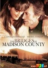Medisono grafystės tiltai (1995)