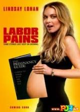 Laikinai nėščia