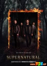 Išrinktieji (12 Sezonas) (2016)