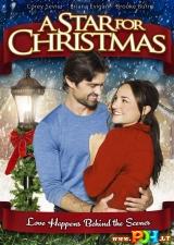 Kalėdų žvaigždė (2012)