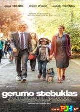 Gerumo stebuklas (2017)