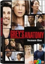 Grey anatomija (1 Sezonas)