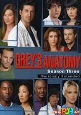 Grey anatomija (3 Sezonas) (2006)
