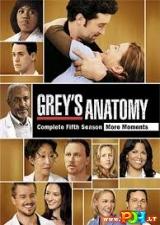 Grey anatomija (5 Sezonas) (2008)