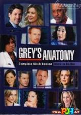 Grey anatomija (6 Sezonas) (2009)