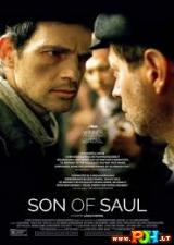 Sauliaus sūnus (2015)