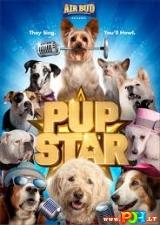 Šuniukas žvaigždė (2016)