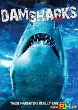 Ryklių užtvanka (2016)