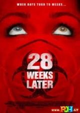 28 savaitės po