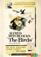 Paukščiai (1963)